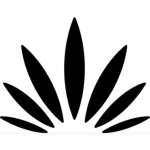 Cannabis Society